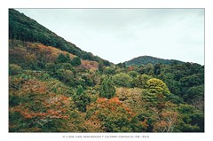 (mr ivanchan) Tags: kyoto japan japanese mountain trees autumn carlzeiss contaxg2 21mm biogon fujifilm film analog iso100  inspiredbylove