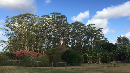 Orme Road, Buderim, Queensland