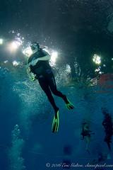 Sortie plonge EPSO - Piscine de Gatineau (Classicpixel (Eric Galton) Photography Portfolio) Tags: epso gatineau plonge dive diving diver padi cmas naui sidemount discovery fins tank scuba ericgalton classicpixel