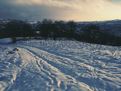 ... not quite here yet ... Newtown Powys Winter Wales Cold Temperature Hills Snow Footprints Trees Winter Wonderland Cold Other Year's Snow     (Almena14) Tags: newtownpowys winter wales coldtemperature hills snow footprints trees winterwonderland cold otheryearssnow