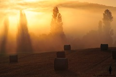 Wenn sich die Sonne ins Land ergiet (8aleks8) Tags: sonne sonnenaufgang sun sunrise pyrenen pyrenees natur light fields felder