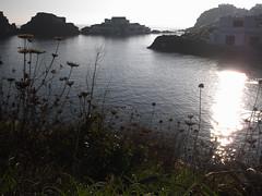 morning swimmer (the incredible how (intermitten.t)) Tags: espaa swimmer menorca baleares minorca balearicislands illesbalears 25363 samesquida espaa 20141009