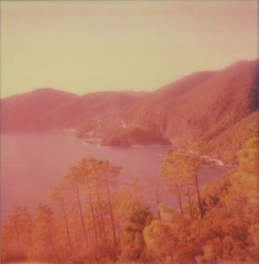 o espirito da paz (www.matteovarsi.com) Tags: pink trees sunset sea italy panorama mountains peace view peaceful seashore impossible framura saltodellalepre panview sx70colorfilm