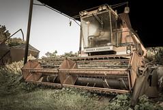 Combine-ing to Get Ya! (Gavin D Mills) Tags: aged combineharvester masseyferguson distagont2815 distagon1528ze