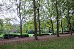 Alter Botanischer Garten (anton.bauer72) Tags: park herbst platanen