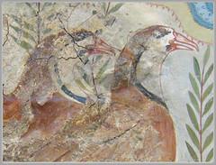 "Archaeological Museum, Heraklion, Crete ~ Minoan Art ~  Fresco ~ Two Geese (Album ""Mijn Eigen Weg...."") Tags: history archaeology crete fresco heraklion knossos twogeese palaceofknossos minoancivilization minoanart september2015 minoanpeople archaeoligcalmuseum"