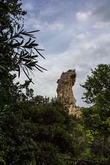 Siracusa, Italia! (Flavio~) Tags: day2 italy sicily archeologicalpark neapolis oct2015 syracusaortigia