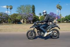 IMGP9328-e (anjin-san) Tags: southafrica spring italian ride pentax donald motorbike riding motorcycle jacaranda ducati pretoria ontheroad waverley gauteng dollshouse jacarandas 2015 transvaal hypermotard csir mx1 massyn donaldmassyn lynnwoodmanor meiringnauderoad pentaxmx1