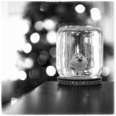 Wonderful Christmas time! (Mister Blur) Tags: christmas 35mm wonderful happy navidad nikon holidays child time bokeh christmastree merry feliz 18 handcraft joyeuxnoel manualidad d7100