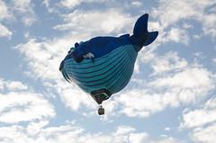 DSC_0110 (Michael P Bartlett) Tags: balloons hotairballoons adirondacks adirondackballoonfestival2016 sky clouds
