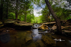 From Rain To Waterfalls (Cathy Neth) Tags: 2016inphotos 365photoproject 365project flowermoundphotographer flowermoundphotography cathyneth cathynethphotography cnethphotography creek flowermoundparks landscapephotography landscapes longexposure longexposurephotography nature naturephotography project365 stonecreek stonecreekpark trees water watermovement waterphotography waterfalls leefilters bigstopper landscape waterfallphotography waterfall