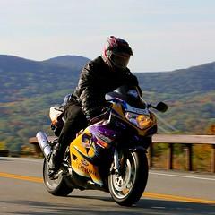 Suzuki GSX-R 1610164778w (gparet) Tags: bearmountain bridge road scenic overlook motorcycle motorcycles goattrail goatpath windingroad curves twisties