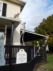 Skeletons (Morganthorn) Tags: halloween haunted house spooky creepy skeleton spider ghost ghoul zombie horror
