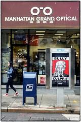 NY Bully (Walker Evans is my Hero) Tags: trump d810 nyc street newyork 85mm