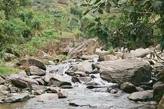 (Implosion VoidListica) Tags: colombia antioquia analoga arbol agua ro piedras verde