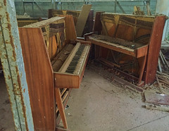 Pripyat Piano Shop-(Chernobyl Exclusion Zone)_5 (Landie_Man) Tags: none pripyat chernobyl looted looting disused closed music piano pianist culture bars beats frets instrument grand fine radioactive radiation ionising shop store shut buy bought purchased forgotten play nuclear power plant the zone ukraine ussr cccp ccpp soviet union