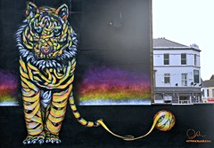 TIGER THREAT (plot19) Tags: street art blackpool uk england britain tiger nikon north northwest northern now plot19 photography wall urban