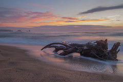 El tronc i Les Medes (ouyea...) Tags: illesmedes illes lestartit baixempord catalunya catalonia tronc aigua water sunset mediterrneo mar mediterraneo fujifilmxpro1 fujifilm fujiflmxpro1 fujifilmxpro fujinon fujinon18