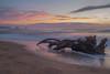 El tronc i Les Medes (ouyea...) Tags: illesmedes illes lestartit baixempordà catalunya catalonia tronc aigua water sunset mediterráneo mar mediterraneo fujifilmxpro1 fujifilm fujiflmxpro1 fujifilmxpro fujinon fujinon18