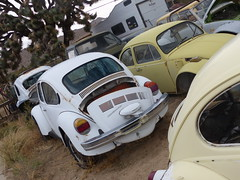 The Old Volks Home (30) - 24 October 2016 (John Oram) Tags: vw volkswagen vwbeetle frenchs yuccavalley theautoclinic 2002p1140327
