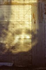 21110007 (alexdotbarber) Tags: 1125 35mm kodakgold100 nikon50mmf14 nikonf slr colornegative f11 sunset unmeteredprism