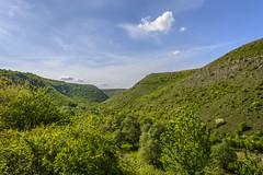 Tipova (nastasenika) Tags: outdoor foothill hill landscape grassland field moldova tsipova