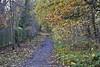 23 November 2016, - Pinchinthorpe, Highcliff Nab & Guisborough (The Grey Panther) Tags: thegreypanthers greypanthers pinchinthorpe highcliffnab guisborough huttonvillage