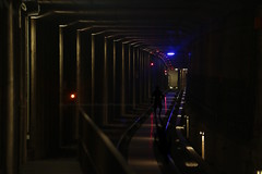 329/366 - Follow the light... (Sinuh Bravo Photography) Tags: canon eos7d nightshot lowlight potd2016 ayearinphotos berlin ubahn tunnel explorer silhouette man coloredlights