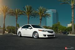 Acura TSX | VX110