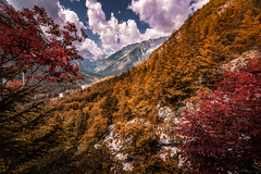 Alps (Croosterpix) Tags: alps mountains slovenia landscape trees clouds sky nature