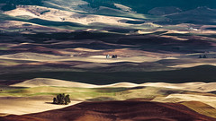 Land Sculptures (John Westrock) Tags: garfield washington unitedstates us landscape rollinghills steptoebutte nature farms farmfield shadows pacificnorthwest canoneos5dmarkiii canonef100400mmf4556lisusm rural palouse farming