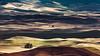Land Sculptures (John Westrock) Tags: garfield washington unitedstates us landscape rollinghills steptoebutte nature farms farmfield shadows pacificnorthwest canoneos5dmarkiii canonef100400mmf4556lisusm rural palouse farming