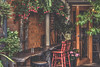 Garden Cafe (satochappy) Tags: cafe cafeonceuponatime coffee garden gardencafe retro vintage old flowers fuchsia hydrangea table chair antique cappuccino ladder