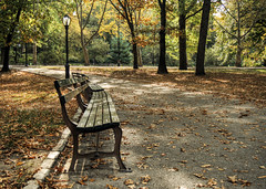 Seats, Central Park NYC (neilalderney123) Tags: 2016neilhoward autumn fall stas usa neyyork nyc leaves centralpark olympus seasons