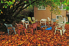 Meeting Of Leaves 16-1111-1561 (digitalmarbles) Tags: backyard chairs lawnchairs fall autumn fallen leaves house windows tree yard burnaby lowermainland bc britishcolumbia canada nikond300 nikon suburb