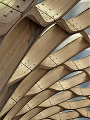 Chicago, Lincoln Park Zoo, Event Pavilion, Abstract (Studio Gang Architects) (Mary Warren (7.6+ Million Views)) Tags: chicago lincolnpark lincolnparkzoo architecture building pavilion wood art sculpture abstract lines curves diagonals