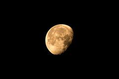 Moon 181116 (Martin Hesketh) Tags: martinheskethphotography martinhesketh moon explore me london surrey cheam uk nightshot autumn
