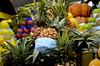 Lote de abacaxi (CehAkemiFotografia) Tags: frutai azeda doce verde amarela mercado sementes caroço abacaxi coroa saopaulo brasil