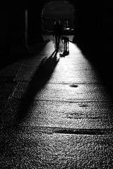 Silhoutte with dog ;-) (PIXXELGAMES - Robert Krenker) Tags: newspaper news cafe kaffee vienna wien snapshot unknown candid portrait portret schwarzweiss blackandwhite blacknwhite bnw fujifilm fujinon filmsimulation lifestyle street streetstyle urban streetphotographer streetphotography biancoenero silhouette dog walk longlegs blueeyes lady sunshine againstthesun sun dark shadow longshadows