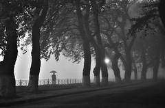 * (PattyK.) Tags: ioannina giannena giannina epirus ipiros mycity whereilive lovelycity lakeside lakefront monochrome umbrella fog mist bythelake europe balkans autumn autumnmorning 2016 october