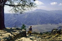 Basket Man (Hubert Streng) Tags: man tree view himalaya pokhara sarangkot path