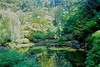 Portland Japanese Garden Pool with Waterfall (mahteetagong) Tags: park city oregon garden portland japanese waterfall washington pond nikon tokina 1224mmf4 d80