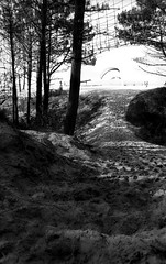 Envole-toi! (GG_Abitbol) Tags: trees sunlight beach holidays wind noiretblanc path dune arbres grille passage voile plage ilford fp4 praktica chemin trou argentique grillage 125 parapente pyla mtl5b