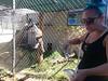 20150919_115215 (mjfmjfmjf) Tags: oregon zoo 2015 greatcatsworldpark