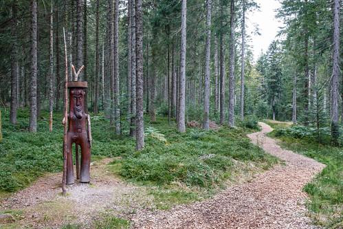 Sentier Waldpfad au Kniebis