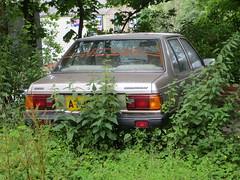 1983 Datsun Sunny 1.3 DX (GoldScotland71) Tags: nissan sunny 1983 13 1980s datsun dx a799ghg