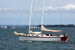 IMG_6281 (LoxPix2) Tags: panorama birds landscape boat kayak sailing aircraft brisbane panoramic catamaran sail skiff loxpix