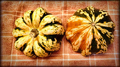 Sweet Dumpling Squash (I) (gtncats) Tags: food nature gourds vegetable squash topazlabs textureeffects pse14 photographyforrecreation canong16powershot