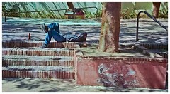 Plaza Salvador Brau (SamyColor) Tags: color film colors kodak oldsanjuan puertorico streetphotography sanjuan negative roll aviary pelicula analogue colori negativo yashica 45mm viejosanjuan lightroom rollo colorido analogico rolloffilm yashicaelectro35gt fotografiacallejera ultramax400 kodakultramax400 lightroom3 yashinon45mmf17 epsonperfectionv500scanner rollodepelicula plazasalvadorbrau