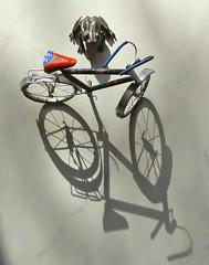 Petit vélo et grenouille (cadeau de nos amis anglais pour l'un de mes anniversaires passés chez eux, il y a longtemps, à moi la froggy!). (Marie-Hélène Cingal) Tags: france bicycle frog 40 bicyclette vélo grenouille landes sudouest aquitaine cagnotte paysdorthe